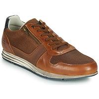 Schuhe Herren Sneaker Low Bullboxer 477K26343FKNCG Braun