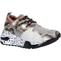 Schuhe Damen Multisportschuhe Steve Madden CLIFF SM11000185 Marr?n