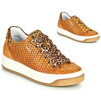 Schuhe Damen Sneaker Low IgI&CO SHOUHAI Ocker