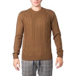 Kleidung Herren Pullover Hydra Clothing 3202220 Beige