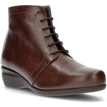 Schuhe Damen Low Boots Dtorres OTTAWA SPITZENSTIEFEL TABAK