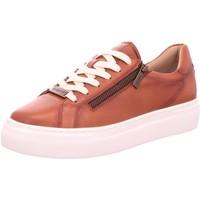Schuhe Damen Sneaker Low Diverse sneaker 412-88303-4100 braun