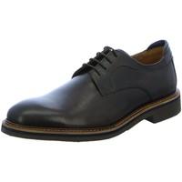 Schuhe Herren Derby-Schuhe Salamander Schnuerschuhe 31-82301-04 braun