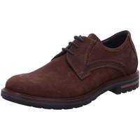 Schuhe Herren Derby-Schuhe Sioux Schnuerschuhe Dilip 707 H 38403 braun