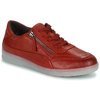 Schuhe Damen Sneaker Low Jana PHOEBIA Rot