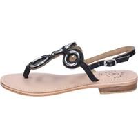 Schuhe Damen Sandalen / Sandaletten Adriana Del Nista BK994 Schwarz