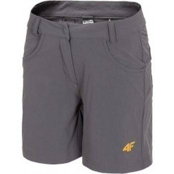 Kleidung Damen Shorts / Bermudas 4F Womens Functional Shorts Grau