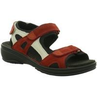 Schuhe Damen Sandalen / Sandaletten Fidelio Sandaletten g 445007-47 rot