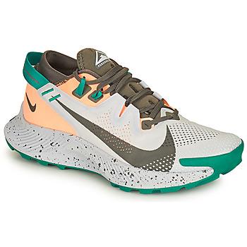 Schuhe Damen Laufschuhe Nike NIKE PEGASUS TRAIL 2 Blau / Grün