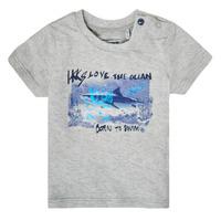 Kleidung Jungen T-Shirts Ikks XS10031-24 Grau