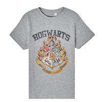 Kleidung Kinder T-Shirts TEAM HEROES  HARRY POTTER Grau