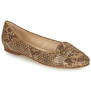 Schuhe Damen Ballerinas Betty London OVINOU Maulwurf