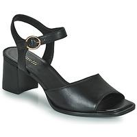 Schuhe Damen Sandalen / Sandaletten Minelli TURINA Schwarz