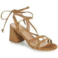 Schuhe Damen Sandalen / Sandaletten Minelli TATIA Braun