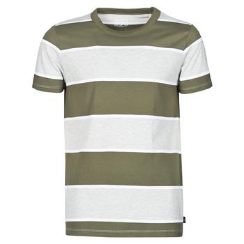 Kleidung Herren T-Shirts Esprit T-SHIRTS Kaki