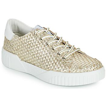 Schuhe Damen Sneaker Low Café Noir JANISA Weiss / Gold