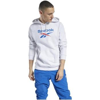 Kleidung Herren Sweatshirts Reebok Sport Sport Classics Vector Hoodie FT7297 Other