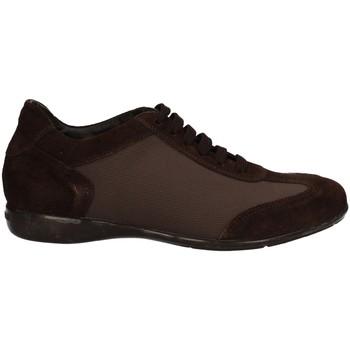 Schuhe Herren Sneaker Low Campanile X58 BRAUN