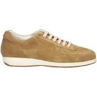 Schuhe Herren Sneaker Low Campanile X1 HONIG