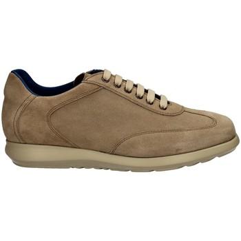 Schuhe Herren Sneaker Low Campanile X127 DAINO