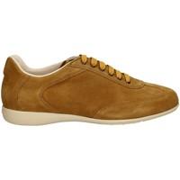 Schuhe Herren Sneaker Low Campanile X127 HONIG