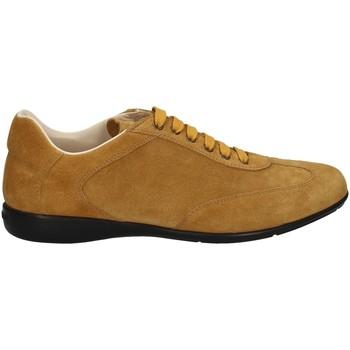 Schuhe Herren Sneaker Low Campanile X127 WOT