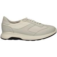 Schuhe Herren Sneaker Low Campanile X114 WEISS