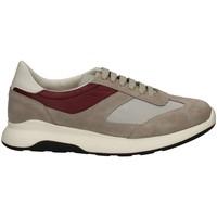 Schuhe Herren Sneaker Low Campanile X114 GRAU