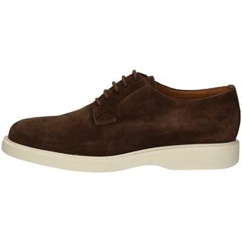 Schuhe Herren Derby-Schuhe Campanile X59 TAUPE