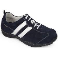 Schuhe Herren Sneaker Low Calzamedi DIABETIC SPORTS  SCHUHE BLUE