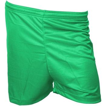 Kleidung Herren Shorts / Bermudas Precision  Grün
