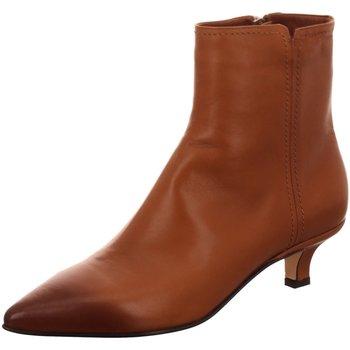Schuhe Damen Stiefel Pomme D'or Stiefeletten Helle 4666A braun