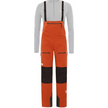 Kleidung Herren Overalls / Latzhosen The North Face NF0A3SPMFHY1 Orange