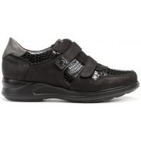 Schuhe Damen Sneaker Low Dorking 24 Hrs mod.8657 Schwarz