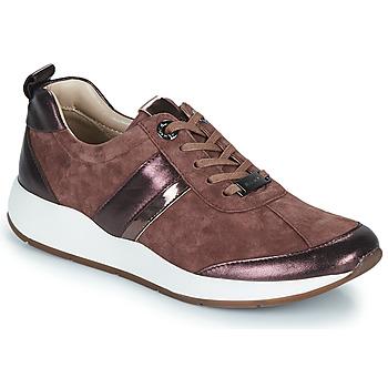 Schuhe Damen Sneaker Low JB Martin KAP Rose