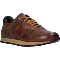 Schuhe Herren Sneaker Low Exton 591 Braun