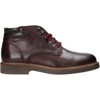 Schuhe Herren Boots Exton 852 Andere