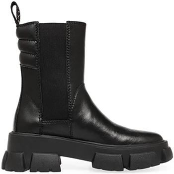 Schuhe Damen Boots Steve Madden SMSTRANSAM-BLK Schwarz