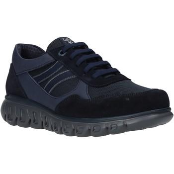 Schuhe Herren Sneaker Low CallagHan 12919 Blau