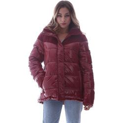 Kleidung Damen Daunenjacken Invicta 4432435/D Rot