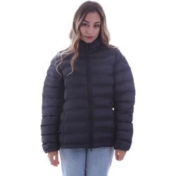 Kleidung Damen Daunenjacken Invicta 4431720/D Blau