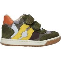 Schuhe Jungen Sneaker High Falcotto 2015271 02 Grün