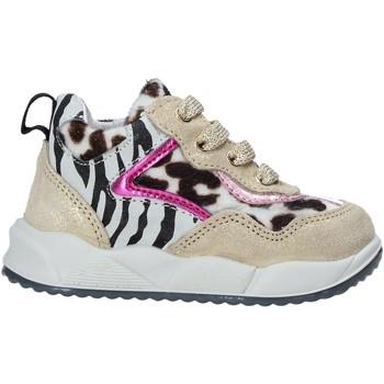 Schuhe Kinder Sneaker Falcotto 2015423 02 Gold