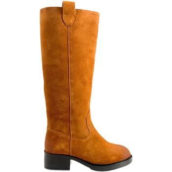 Schuhe Damen Klassische Stiefel Apepazza F0BEATRIX02/SPL Braun