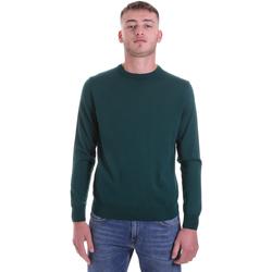 Kleidung Herren Pullover Navigare NV11006 30 Grün
