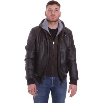 Kleidung Herren Jacken Roberto Cavalli FST407 Braun