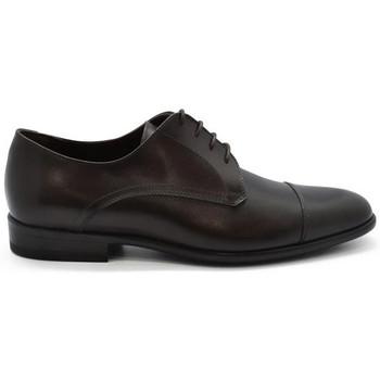 Schuhe Herren Derby-Schuhe & Richelieu Alberto  Braun
