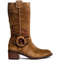 Schuhe Damen Klassische Stiefel Alpe 4446 Braun