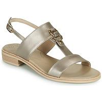 Schuhe Damen Sandalen / Sandaletten NeroGiardini PLUIE Gold