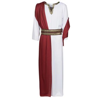 Kleidung Herren Verkleidungen Fun Costumes COSTUME ADULTE JULIUS Multicolor